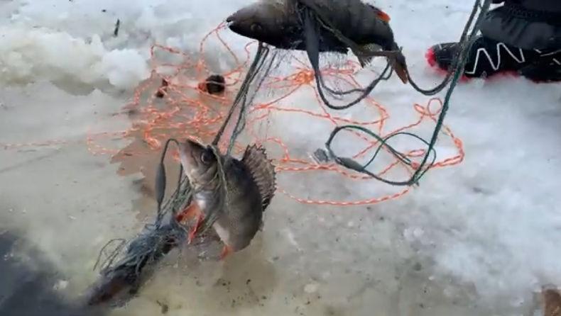 Kalakeskiviikko